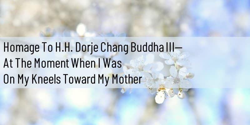 Homage to H.H. Dorje Chang Buddha III— At the Moment When I Was on My Kneels Toward My Mother