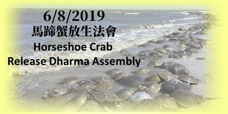 能人教法寺馬蹄蟹放生法會 Tathagata Dharma Temple Horseshoe Crab Release Dharma Assembly
