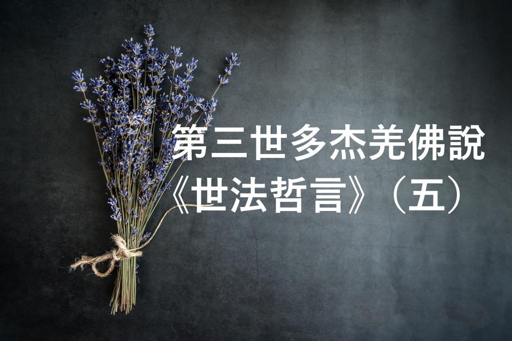 第三世多杰羌佛 說《世法哲言》(五)