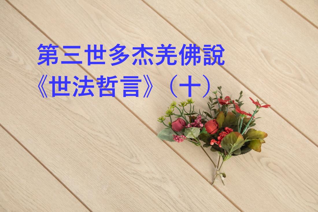 第三世多杰羌佛說 《世法哲言》(十)
